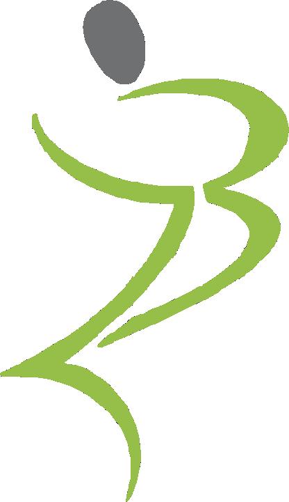 zardini -logo-2